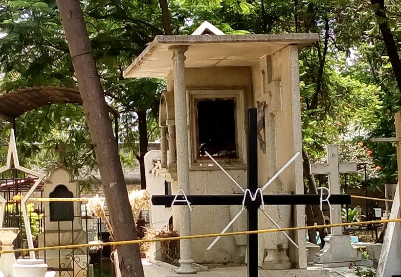 Amenaza enjambre de abejas a vecinos en panteón de Ixcotel, Oaxaca