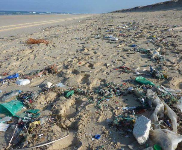 Pochutla libre de plásticos