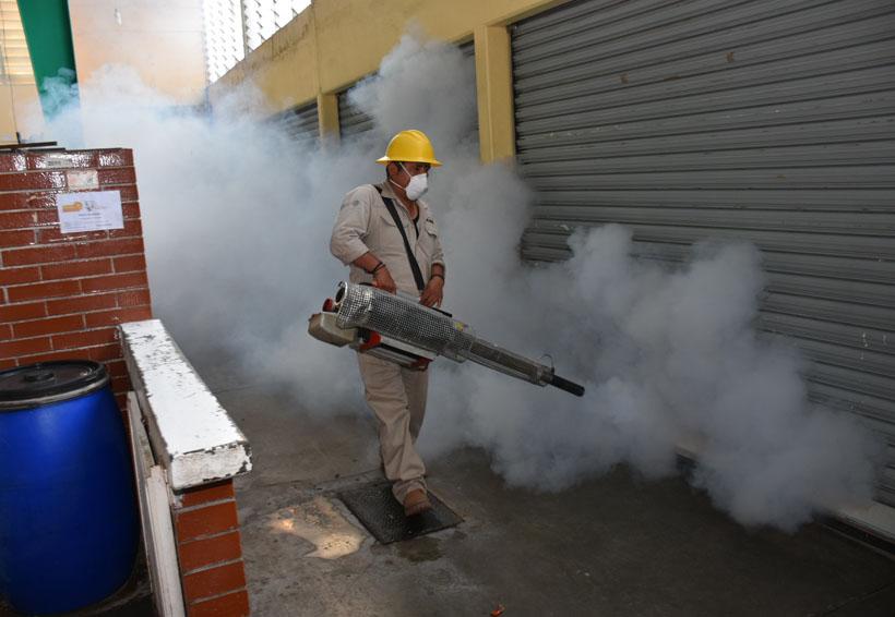Fumigará gobierno el Mercado de Abasto | El Imparcial de Oaxaca