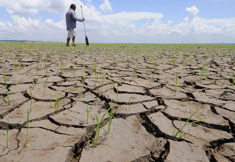 México, entre los países más vulnerables ante cambio climático: INECC | El Imparcial de Oaxaca