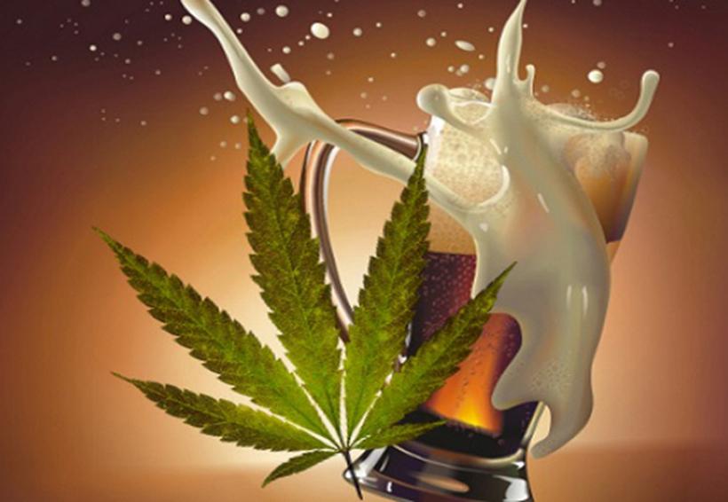 Propietaria de cerveza Corona invierte en marihuana | El Imparcial de Oaxaca