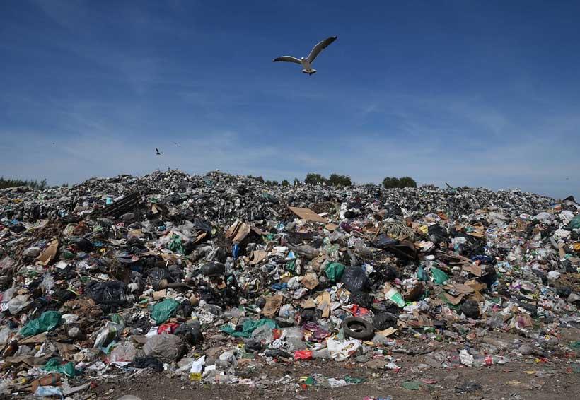 Falta de cultura para disponer de la basura | El Imparcial de Oaxaca
