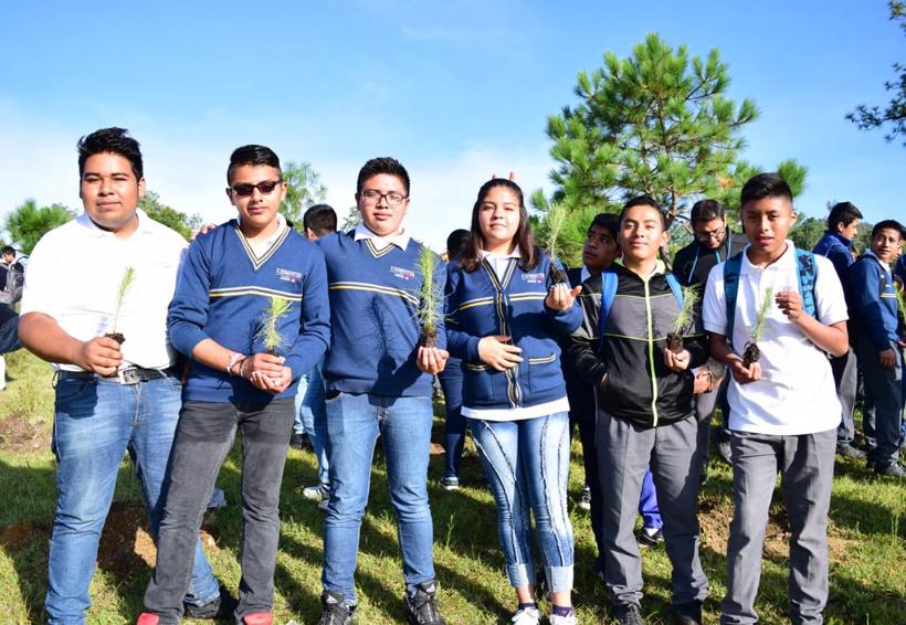 Fiesta por 100 mil árboles  plantados en Tlaxiaco