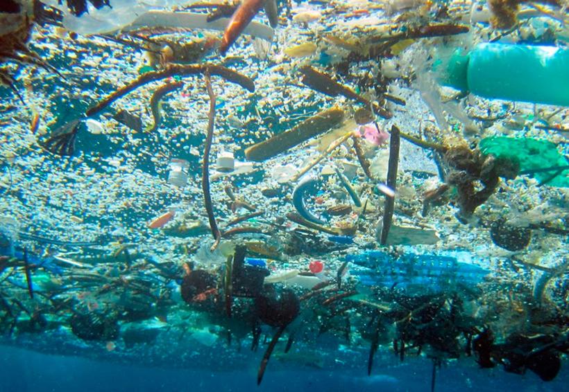 Sigue tendencia de erradicar plásticos   El Imparcial de Oaxaca