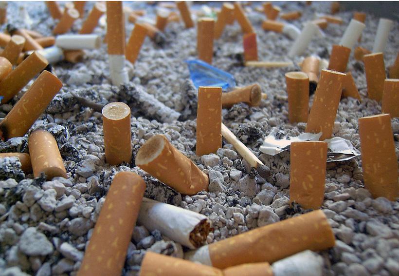 El mayor contaminante de los océanos son las colillas de los cigarros | El Imparcial de Oaxaca