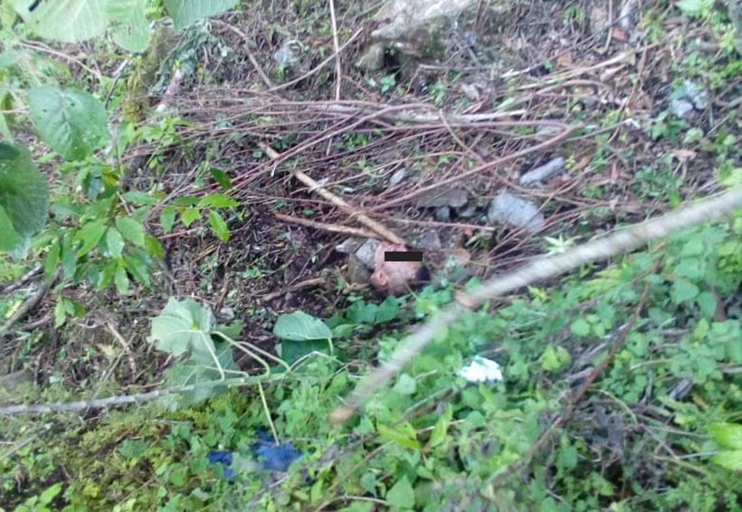 Encuentran un cuerpo desmembrado en Eloxochitlán, Oaxaca | El Imparcial de Oaxaca