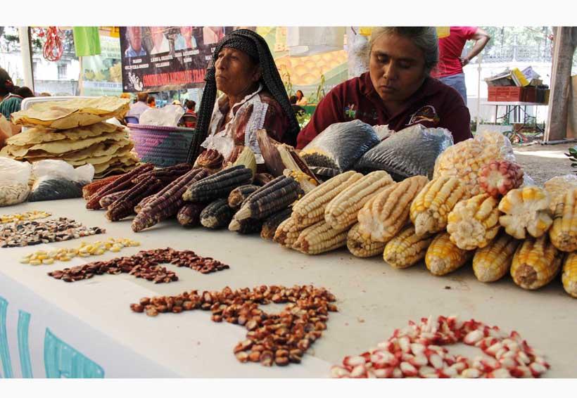 Gran riqueza genética ofrece Oaxaca: Conanp | El Imparcial de Oaxaca