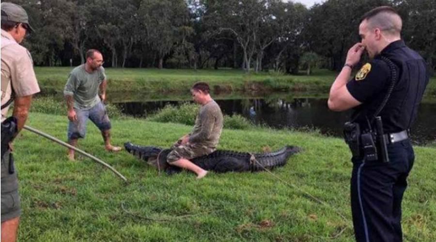 Captan terrible ataque de caimán a hombre en Florida | El Imparcial de Oaxaca