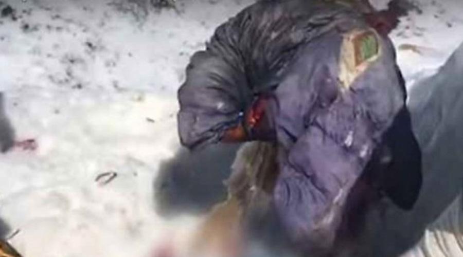 Encuentran cuerpo congelado de alpinista rusa desaparecida hace 31 años | El Imparcial de Oaxaca
