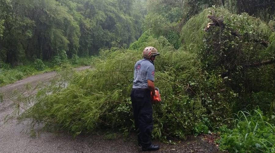 Lluvias provocan socavón en la Costa