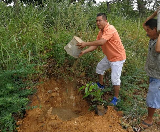 Arrancan jornada de reforestación en Puerto Escondido