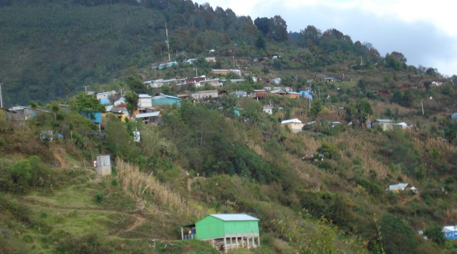 Investigan asesinato de campesino en Miahuatlán