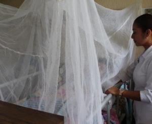 Aumentan casos de dengue hemorrágico en Oaxaca