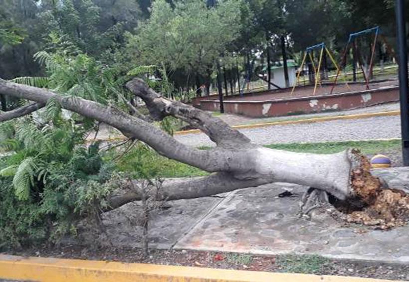 Lluvias dejan daños materiales en la Mixteca | El Imparcial de Oaxaca