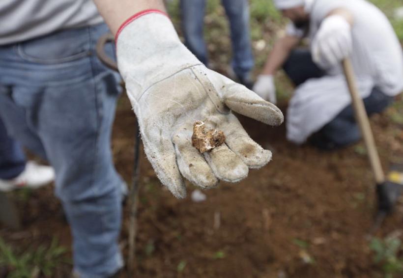CNDH documenta hallazgo de más de 160 fosas clandestinas en un año | El Imparcial de Oaxaca