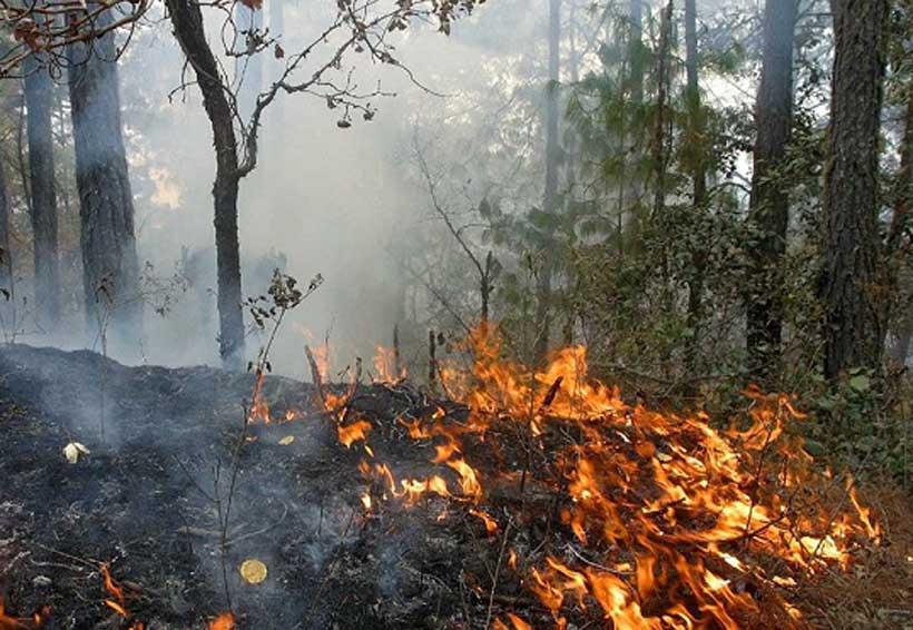 Aumentan incendios en zonas con líos agrarios | El Imparcial de Oaxaca