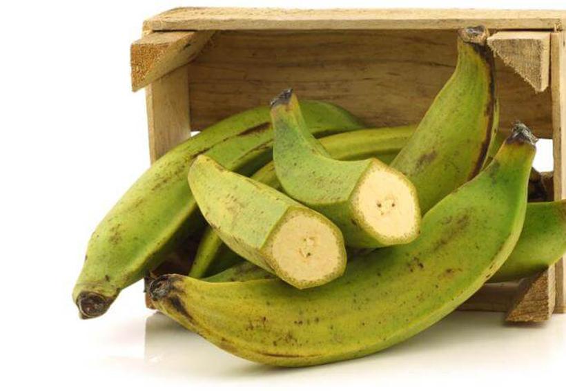 Propiedades del plátano macho para combatir cáncer y diabetes | El Imparcial de Oaxaca