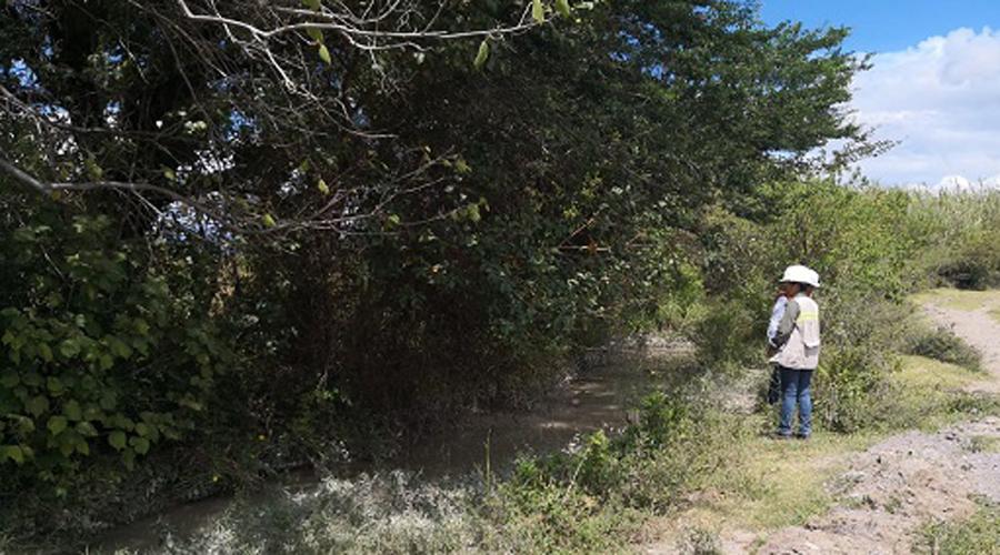 Confirma Profepa derrame  de jales secos y descarta  desbordamiento de la presa en Cuzcatlán | El Imparcial de Oaxaca