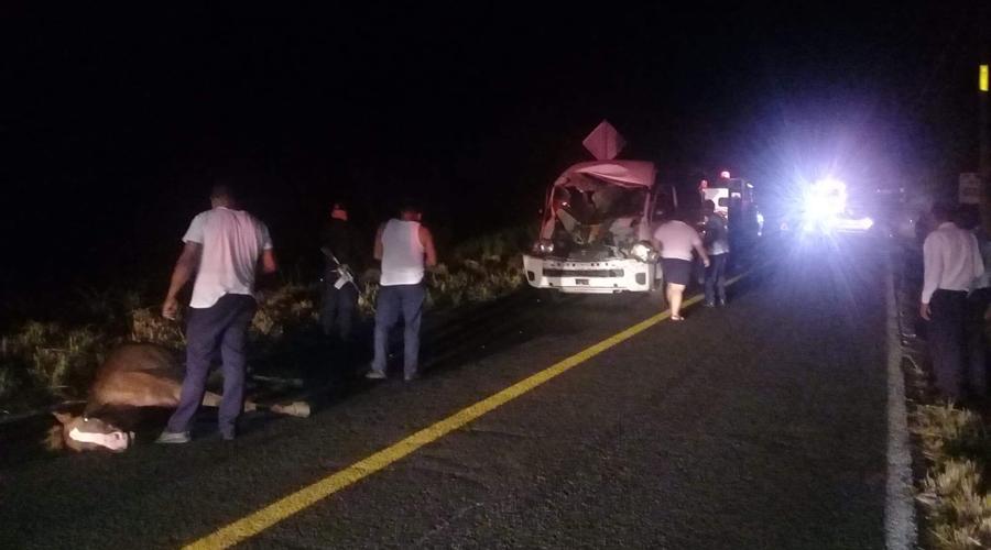 Camioneta de transporte público atropella a caballo en carretera a Pinotepa