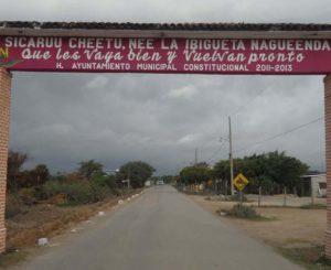 Fallece militar por ataque de abejas en Unión Hidalgo, Oaxaca