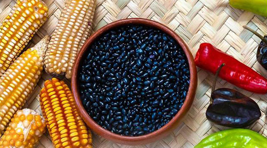 """Oaxaca y sus cocineras, """"tesoro gastronómico"""""""