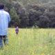 Buscan aumentar en Oaxaca la producción maderable