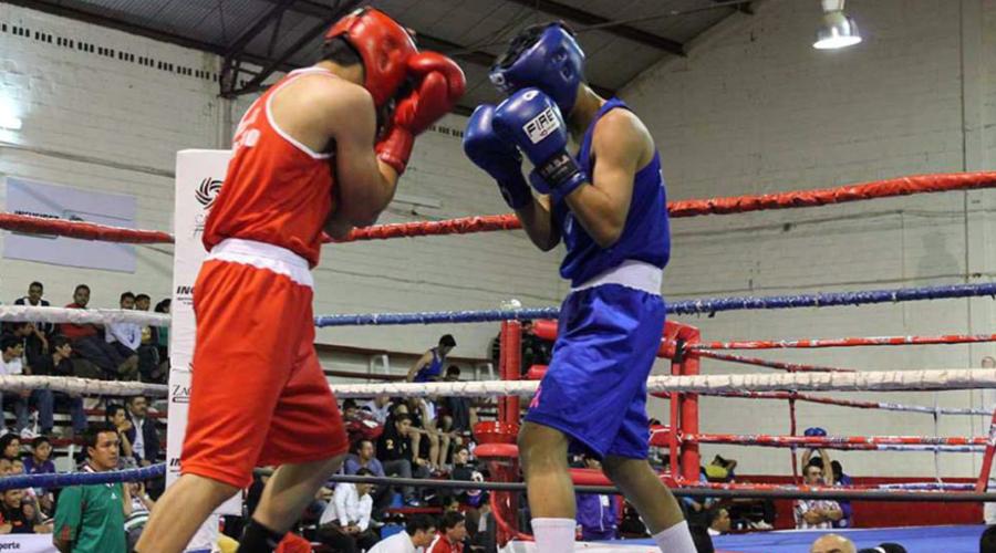 Anuncian periodo de intensa actividad en el box oaxaqueño | El Imparcial de Oaxaca