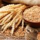 Germen de trigo previene enfermedades del corazón