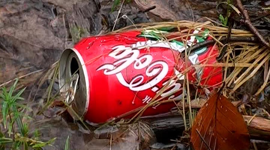 Después de 29 años, resuelven crimen gracias a lata de Coca-Cola | El Imparcial de Oaxaca