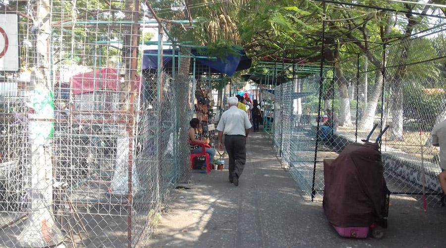 Parque Independencia de Salina Cruz invadido por comerciantes | El Imparcial de Oaxaca