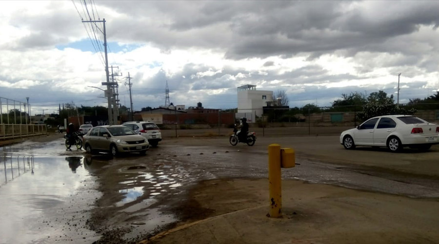 Advierten peligro para conductores y peatones en las inmediaciones de Candiani