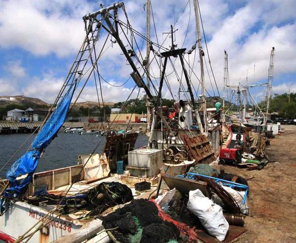 Incremento en el diesel afecta a sector pesquero