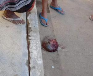 Localizan feto tirado en calles de Copalita