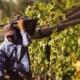 Piden organizaciones agrícolas incremento de 10% para el campo