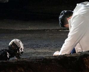Ropa sintética y alto octanaje en gasolina pudo haber ocasionado explosión en ducto PEMEX: Gertz Manero