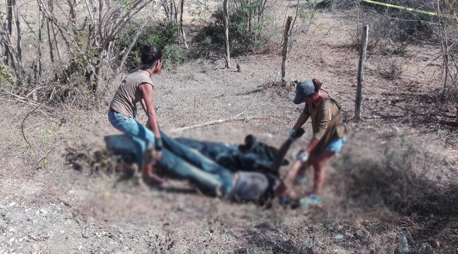 Localizan cadáver putrefacto en Santo Domingo de Morelos   El Imparcial de Oaxaca