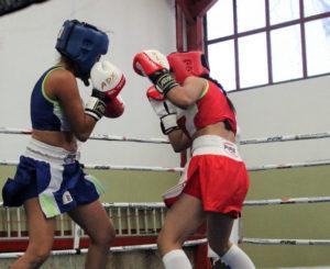 Buscan boxeadores oaxaqueños clasificar para los Juegos Panamericanos