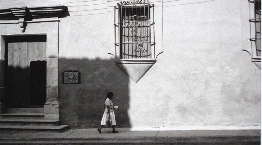 El IAGO: tres décadas y  como lo imaginó Francisco Toledo