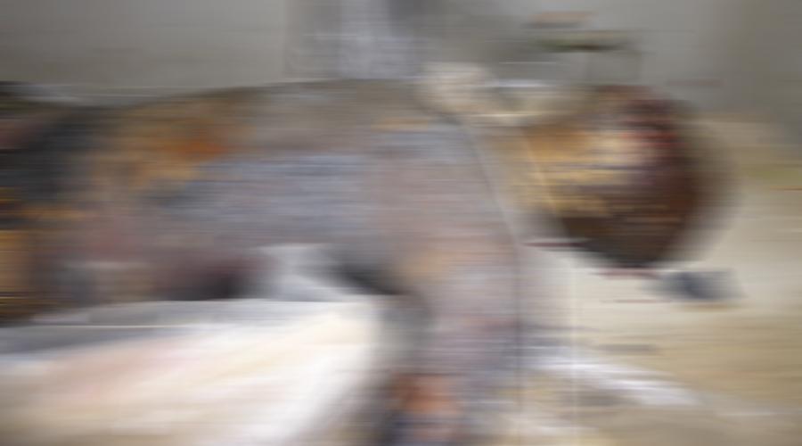Muere calcinado trabajador de la construcción en Santos Reyes Pápalo   El Imparcial de Oaxaca