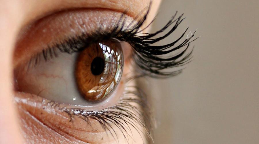 Iris del ojo puede reflejar si tienes colesterol alto | El Imparcial de Oaxaca