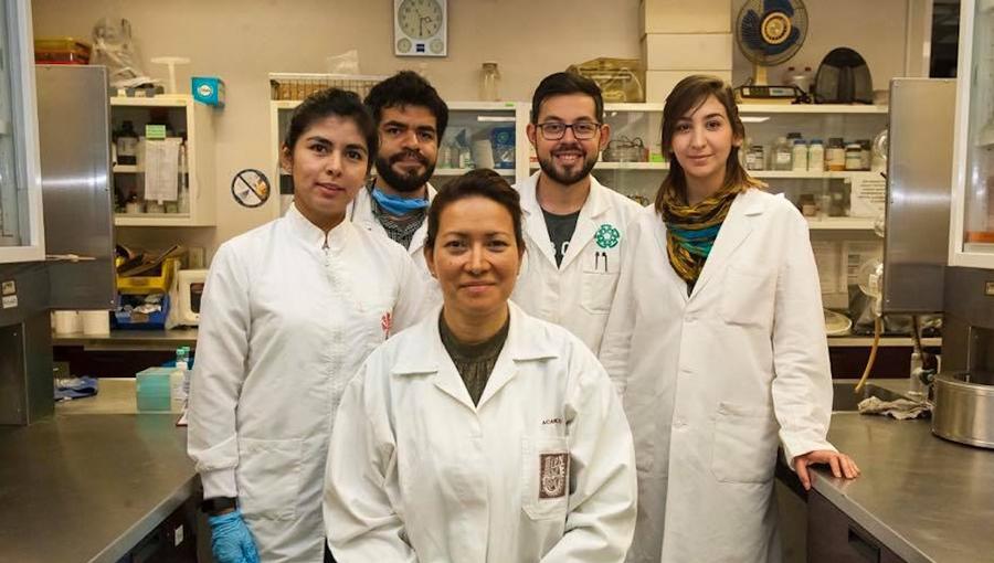 Oaxaqueña, la científica del IPN que eliminó el virus del papiloma | El Imparcial de Oaxaca