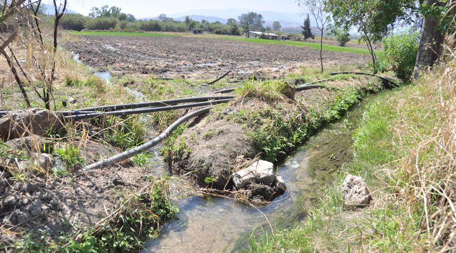 Padece el Valle Eteco por la falta de agua | El Imparcial de Oaxaca