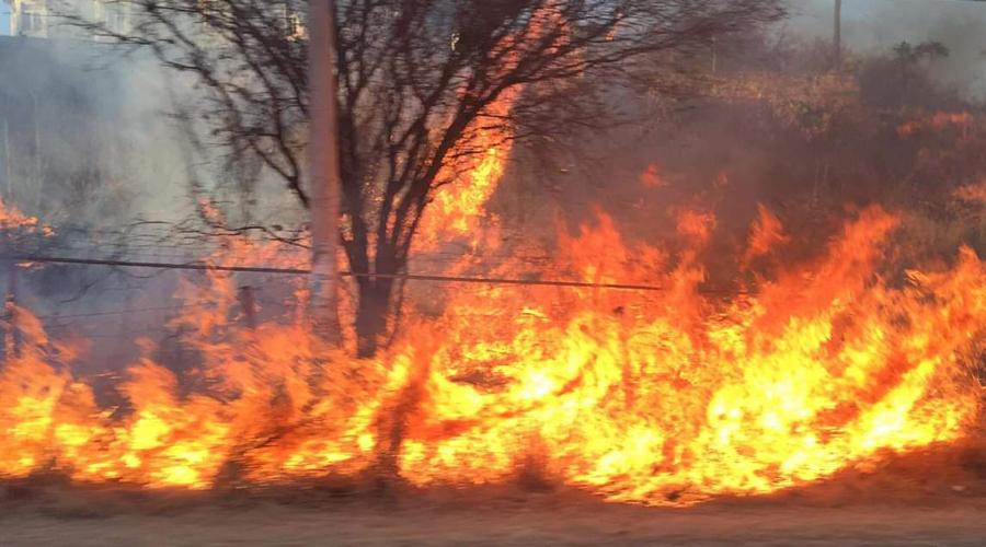 Más de 70 incendios en la Mixteca en lo que va del año: Protección Civil | El Imparcial de Oaxaca