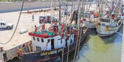 Se paraliza flota pesquera por altos costos de diesel marino