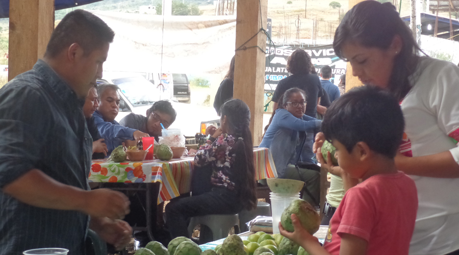 En Ojo de Agua, Tlaxiaco, logran alimentación sana para sus familias