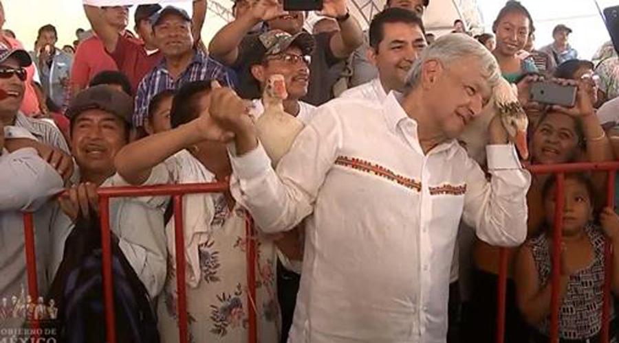 Regalan gansos a AMLO en evento de ganaderos en Campeche | El Imparcial de Oaxaca