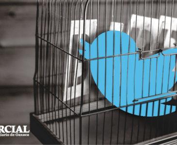 Como recuperar tu cuenta de Twitter si fue hackeada