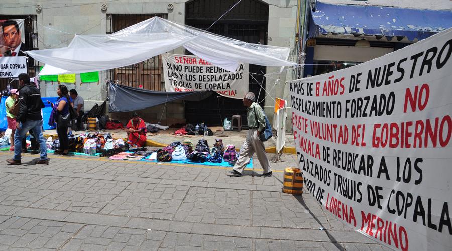 Líderes triquis convierten su condición de desplazados en una mina de oro | El Imparcial de Oaxaca
