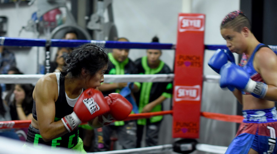 Alistan combates de boxeo en Oaxaca | El Imparcial de Oaxaca