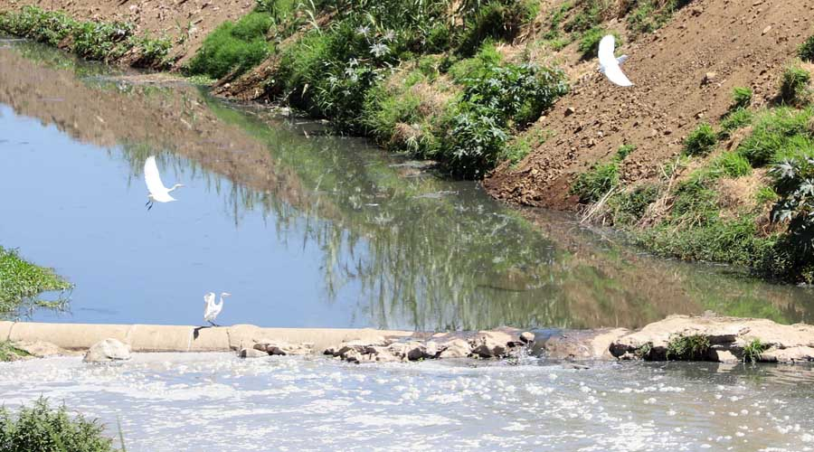 Se acudirá a organismos internacionales para salvar ríos de Oaxaca | El Imparcial de Oaxaca